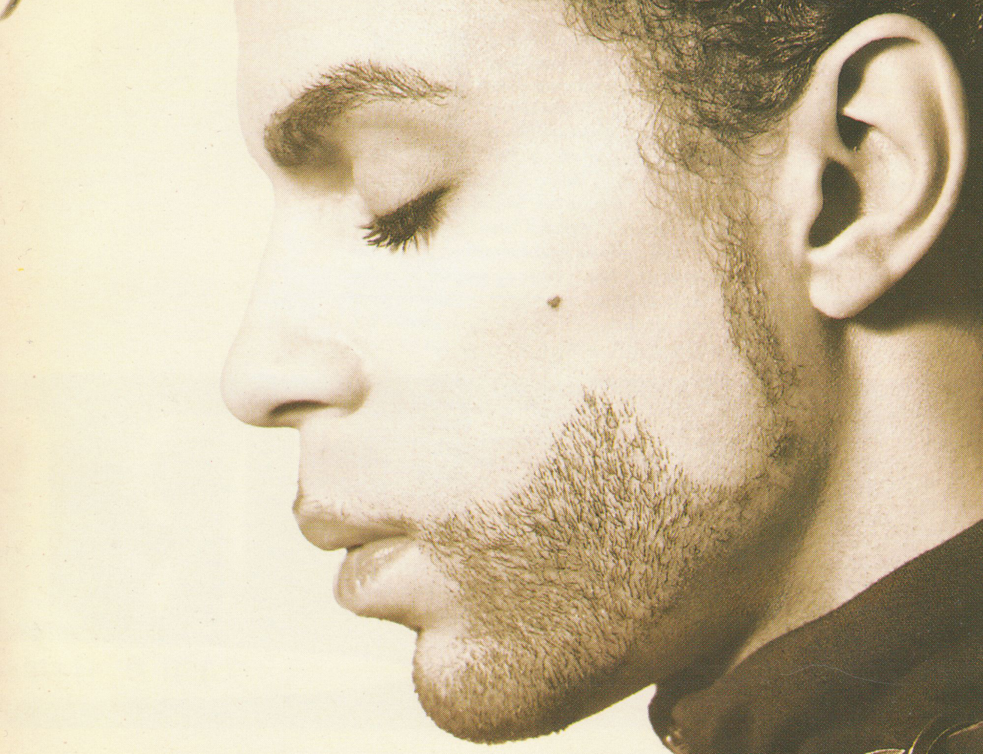 "Cover of ""The Hits"" by Prince (1993)"